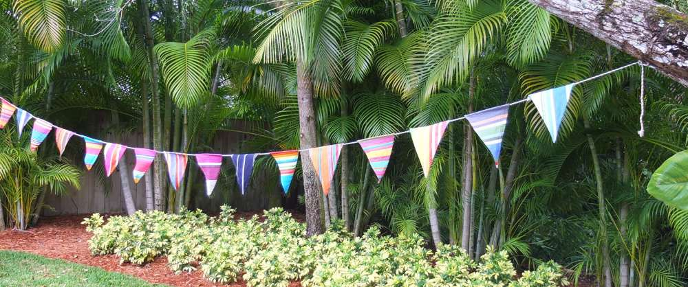 Bunting – A Guide On Choosing And Using